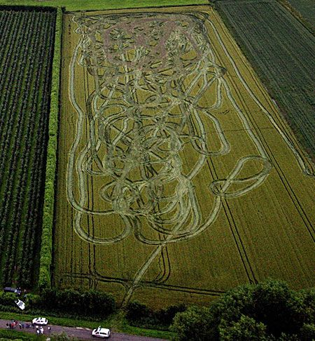 The Carlton Fisk Crop Circle (from abovetopsecret.com)